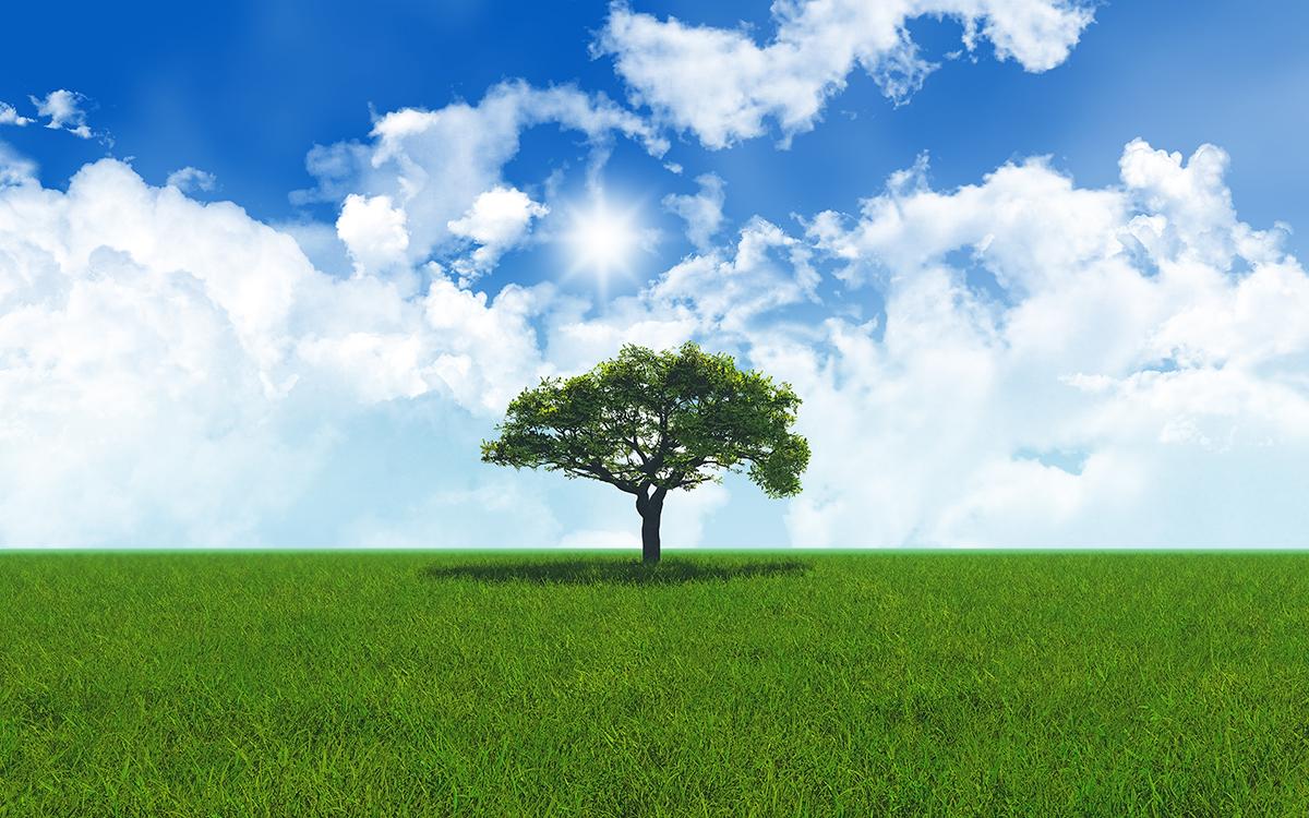 ökologisches Gas